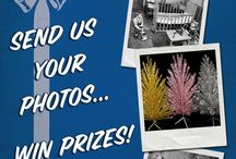 Retro Holiday Photo Contest!  Now through Jan 11! / Show us your vintage season spirit! Enter to win great Wisconsin prizes! Send us a photo of your family around the aluminum Evergleam tree or your favorite vintage (or retro-looking) holiday photo and win prizes!    1st Prize: $100 Real Wisconsin Gift Basket 2nd Prize: $50 Wisconsin Foodie Gift Basket 3rd Prize: $25 Historic Madison Gift Basket  No entry limit.  / by Wisconsin Historical Museum
