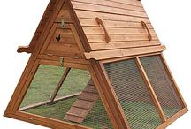 Chicken coops / by Kimberly Parsons