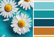 Colour Love / by Natalie KnitsByNat