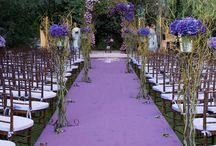 purple wedding / by Wendy Pinne