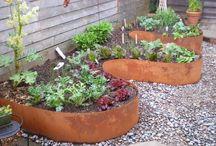 Yard/GARDEN Ideas / by Sandra Cassel
