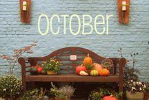 Autumn on My Mind / by Elissa Eblin
