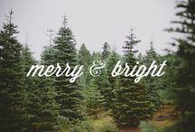 All I Want For Christmas / Dashing through the woods.... / by Harper Finch