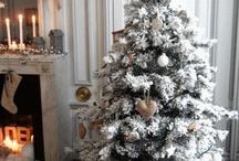 Christmas/Winter / by Jenn Sheehy