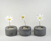 Spring...In Full Bloom / by Chelsea Winn