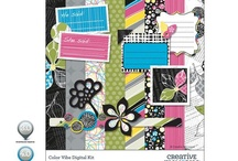Scrapbooking supplies / by Susan Frame