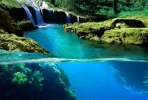 Places I would like to scuba dive / by Kelly Jones