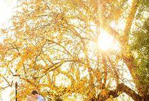 Engagement shoot / by Els Oostveen