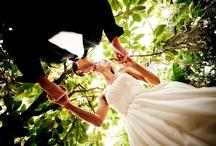 Wedding / by Stacy Nicole