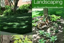 Landscaping / by Allison Kay