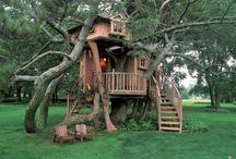 tree houses / by Amanda Sharpe
