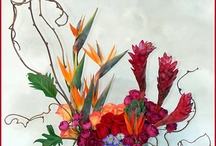 Contemporary floral / by Christie Michael