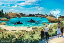 Blue World Project / We're excited to announce BIG NEWS for killer whales (and humans!) all over the world! Learn more -> www.seaworld.com/blueworld / by SeaWorld