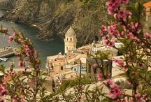 Italy / by Rosemary Della Ratta