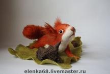 I love squirrels / by Funny Squirrel