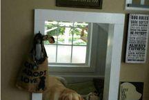 Pet Rooms / by Terri Banks