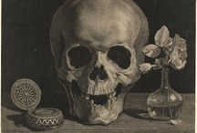 Skull stuff / I have a thing for skulls.   / by TK Crede Weigl