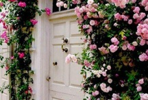 Front Door / Exterior home decor / by Jennifer Carroll @ Celebrating Everyday Life