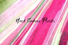 It's all about COLOUR! / by Hort Couture