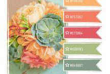 Graphic Design: Colour Palettes / by Didi Kasa