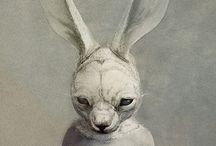 The Rabbit Habbit / The rabbit fetish creepy and cute. / by Hairpik Creative