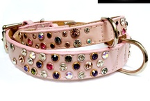 • SPIKES & BLING DOG COLLARS • / by Dog Bar