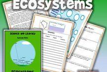 Ecosystem Lesson Plan Ideas / by Deb Higgins