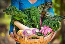 Cool Season Gardening / by Bonnie Plants