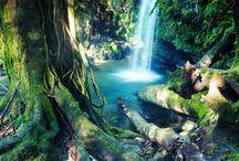 Beautiful Nature / by Selena M