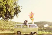 Cutesy Stuff / by Mallory Dixon