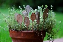 Ode to a Garden / by Amy Quinn