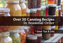 Canning/Freezing/Dehydrating / by G T