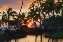 Pins of Hilton Waikoloa Village in Hawaii / Take a look at images of Hilton Waikoloa Village being shared around Pinterest. / by Hilton Waikoloa Village in Hawaii