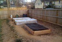 Gardening Solutions / by Kristy Kerner