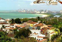 BRASIL - Paisagens e lugares / As cidades, os monumentos, seu povo, sua fauna e sua flora, suas tradições e particularidades. / by Irene Aguiar