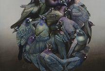 aviary / by Steve Costin
