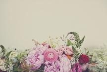 colorfool / by Thorung Tang