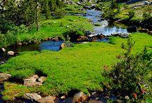 California, state, USA / by randy muir