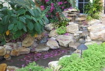 Small Garden Waterfalls by Waterfalls Fountains & Gardens Inc. / by Waterfalls Fountains & Gardens Inc.