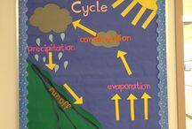 Water cycle / by Jody Urbanczyk
