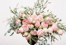 (florals) / by Geri Hirsch