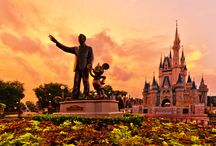 Disney World / by Sue Harshbarger