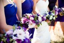 Molly's Wedding / by Betsy Pringle