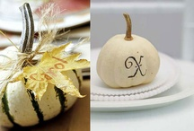 DECORATING WITH PUMPKINS!! / by Rachel Holland, SurvivingTheStores.com