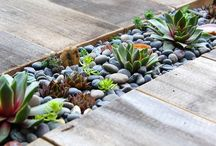 yard ideas / by chiesling