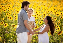 Sunflowers in Tuscany Wedding / real tuscan sunflower weddings - end June and July are the best times to have a wedding in Italy with sunflowers, the temperature is perfect and the fragrances are unbelievable.   / by Bonnie Marie