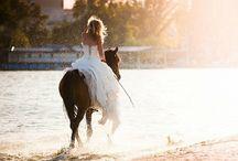 My Dream Wedding / by Haley Kelley