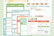Organizing + Cleaning | General / by Amanda Borst