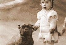 Dogs / by Annika Karlsson