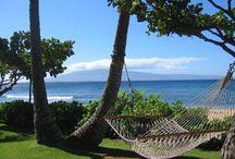 TripAdvisor: Hawaii / TripAdvisor: Hawaii  / by Tammilee Tips